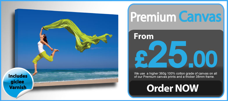 Premium Canvas Printing with Giclee Varnish